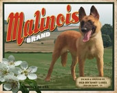 Belgian Malinois Small Wooden Crate