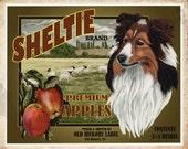Shetland Sheepdog Small Wooden Crate