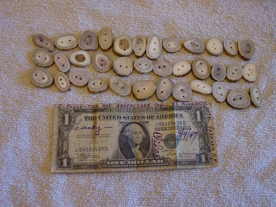 3 dozen antler buttons, 36 antler buttons total drilled