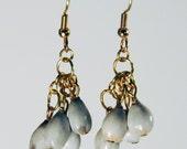 Jobeth- Natural Seed Earrings