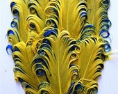 1 Nagorie Curled Feather Pad Yellow and Aqua
