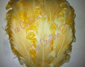 1 Nagorie Curled Feather Pad Ivory on Yellow Buttercream