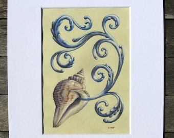 Shell with Swirling Blue Filigree - Hand-Drawn Matted Colored Pencil Drawing