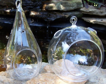 Glass Hanging Terrarium Teardrop or Round Indoor Gardening DIY Wedding Centerpieces