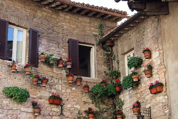 Flowers On the Wall - 8x10 fine art travel photo - walls with flowerpots outside of a nunnery in Assisi, Italy - unisex home or office decor