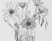 "Black and White Ink Drawing, Botanical Art - Original  - Still Life - ""A Fine Bunch of Flowers"" - Fine Art Drawing"
