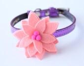 Light Pink Little Bloom Collar Accessory