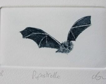 Pipistrelle bat Drypoint. Cute  little bat. Hand printed Artist Proof.