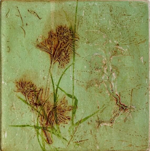 Botanical print. Collograph mono print. Wild flower. Hand printed OOAK.