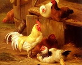 """Counted Cross Stitch Pattern: """"White Rooster"""""""