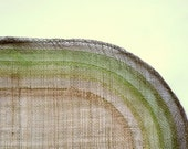 Vintage Woven Placemats - Set of 4 Green and Brown Natural Fibers -  Oblong 19 x 13