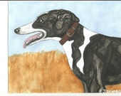 Black & White Greyhound Original Painting