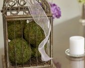 Moss Pomander Balls, Set of 4,  4 inch Moss Balls for Home or Wedding Decor