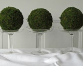 Moss Pomander Balls, Set of 3, 3  inch Moss Balls for Home or Wedding Decor