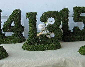 Moss Table Numbers -  Listing for 17 table numbers