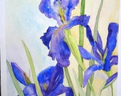 Greeting cards and notecards of watercolor paintings