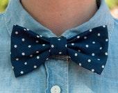 The Blue Gatsby Polka Dot Bow Tie