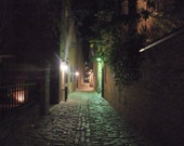 Cobblestoned Charleston alley, haunted, mysterious, dramatic, nocturnal, historic home decor, 5 x 7 - Lehns