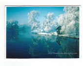 Winter greeting card - blank white blue magical
