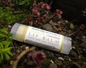 Cardamom Lip Balm - made from Botanicals