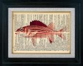 Fish 02 Vintage Illustration on Book Page Art Print (id5015)