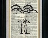 Korean Asian Tree 05 Vintage Illustration on Book Page Art Print (id6516)