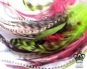 20 FEATHER HAIR EXTENSIONS- 20 Watermelon Medium to Long Feathers, Grizzly & Rooster- 7 Microbeads