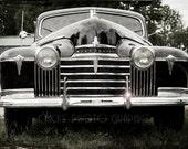 SHIPS IMMEDIATELY, Old Car Photo Print,  1941 Oldsmobile Eight, Hydra-Matic Drive, Black  - 4x6 Fine Art Photograph