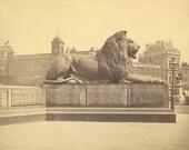 "British landscape. ""Lion Statue, Nelson's Monument, Trafalgar Square, London."" by Francis Frith. ca. 1860s"