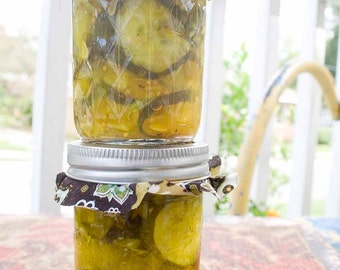 Homemade Bread and Butter Pickles - 8oz