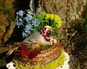Quail Bird Nest Fascinator