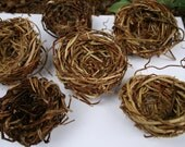 Hand-woven Bird Nest Favors Weddings-Showers-Any Event  w/Woodland,Nature, Garden or Country Theme & Art Projects