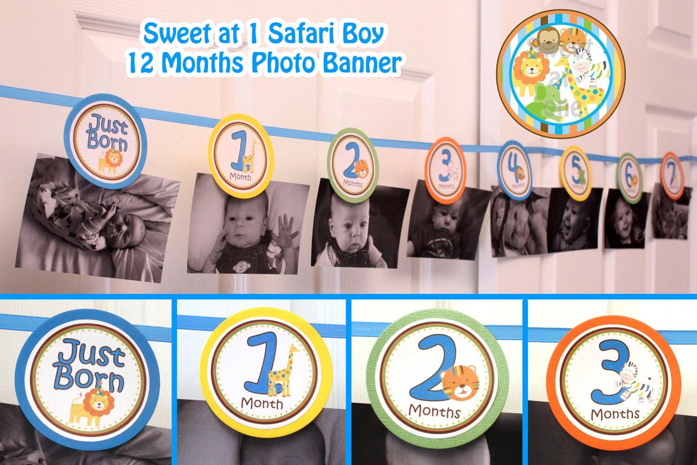 sweet safari photo banner boy picture banner 1st birthday