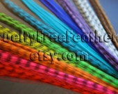 20 Synthetic Feather Extensions