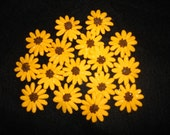 24 Edible Sugar Black-Eyed Susans