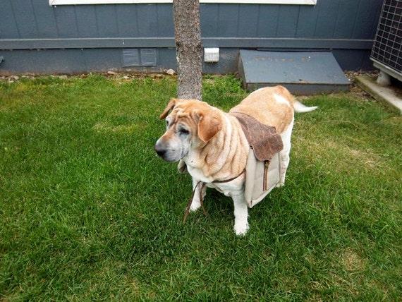 Doggie Western Saddle Bag