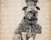 Antique Boxer Dog Prince Victorian Collar Crown Digital Download for Tea Towels, Papercrafts, Transfer, Pillows, etc Burlap No 3575