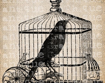 Antique Bird Cage Raven Halloween Illustration Digital Download for Papercrafts, Transfer, Pillows, etc Burlap No 3639