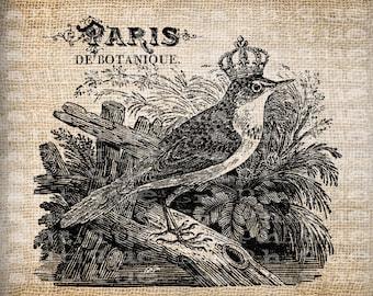 Antique Crown Bird French Paris France Digital Download for Tea Towels, Papercrafts, Transfer, Pillows, etc Burlap No 5795
