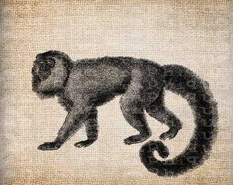 Digital Collage Sheet Download Sheet Fabric Transfer MONKEY for Tea Towels, Papercrafts, Transfer, Pillows, etc Burlap No 6981
