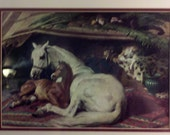 Sir Edwin Landseer Print- The Arab Tent- Mare and Colt