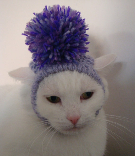 Hand Knitted  Pom Pom Hat for a Cat -  Shades of Lilac and Purple