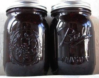 Organic Blueberry Preserves - 16 oz.