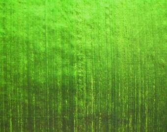 Iridescent Dupioni SILK in Bright Lime-Green