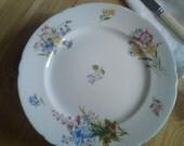 Four pretty pretty spring Wildflower china teaplates by Shelley