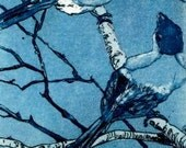 Four Fat Finches, in a tree etching and aquatint
