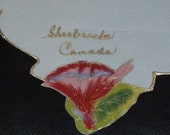 Vintage Sherbrooke, Canada Hand Painted Handkerchief...Perfect Condition