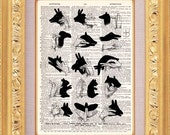 Hand Shadow Puppets Print  - Vintage Dictionary Print Vintage Book Print Page Art Upcycled Vintage Book Art