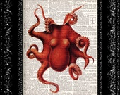 Rich Red Octopus - Vintage Dictionary Print Vintage Book Print Page Art Upcycled Vintage Book Art