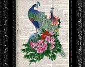 Flower Peacock Vintage Dictionary Print Vintage Book Print Page Art Upcycled Vintage Book Art